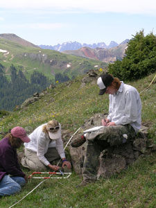 identifying plant species at Senator Beck Basin